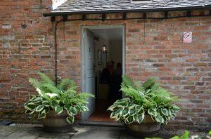 麻生恵 ガーデンデザイナー ギボウシを鉢に植える